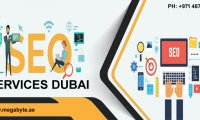 Get genuine leads for your online store with SEO Service Dubai