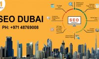 Invest in the SEO Dubai agency for better business results