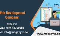 What to expect from a web Development Company in Dubai