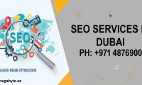 Choose SEO Services in Dubai for improved ranking and traffic